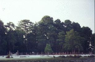 Discovery Island