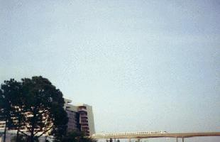 The Contemporary Resort/Monorail